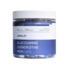 Level Up Glucosamine Chondroitin MSM